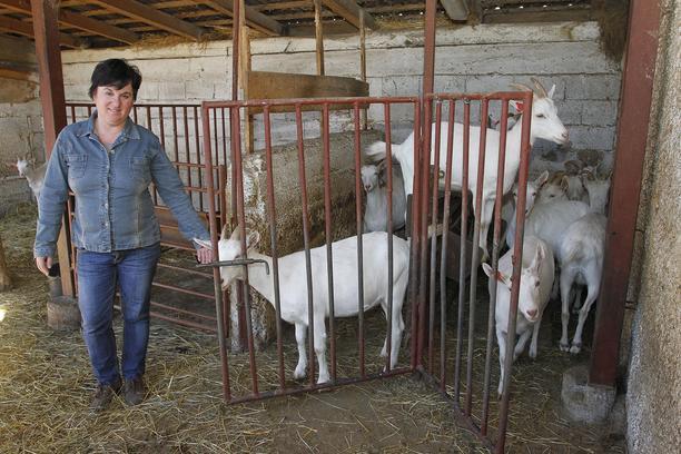 Visit to goat farm of family Zadravec  in Oporovec